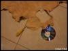 davidtribal-bricolage-dsc08306-800