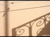 davidtribal-eds-img_8925-800