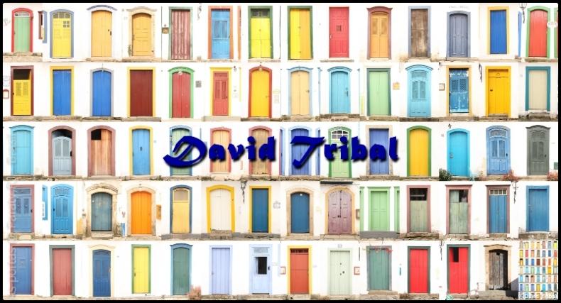 davidtribal-portasdeparaty_14x5-5600x3000-790