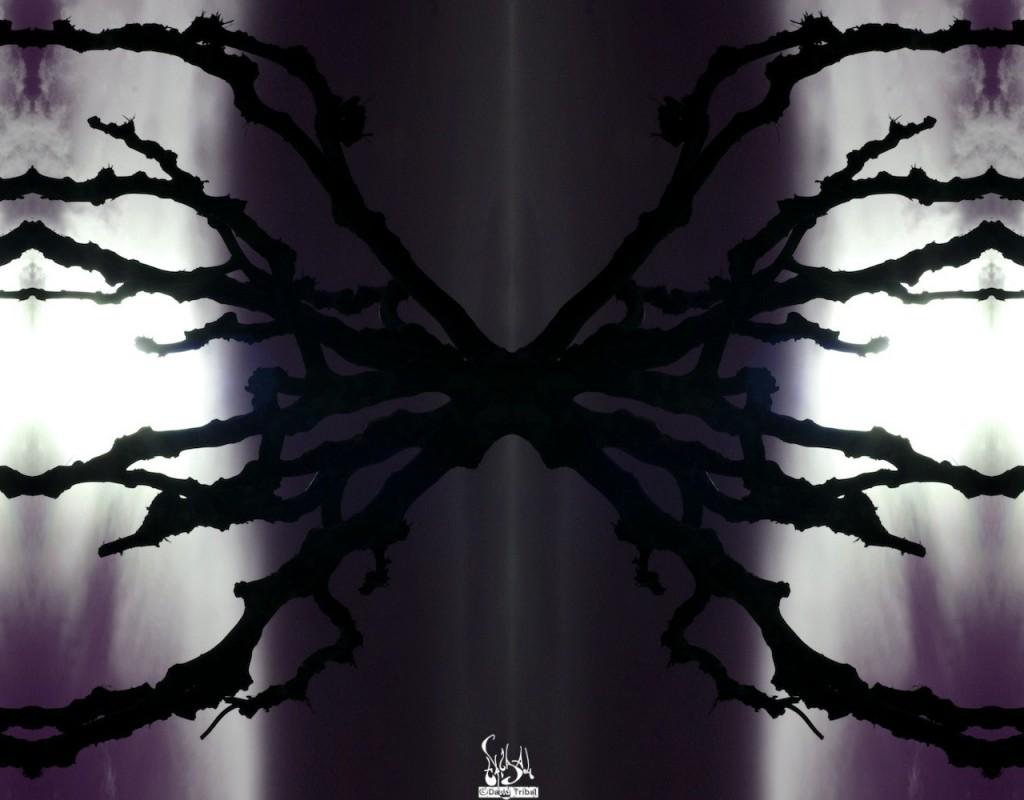 IMG_8270-0728_GMI-Luz-Infini-violet-DavidTribal_1000