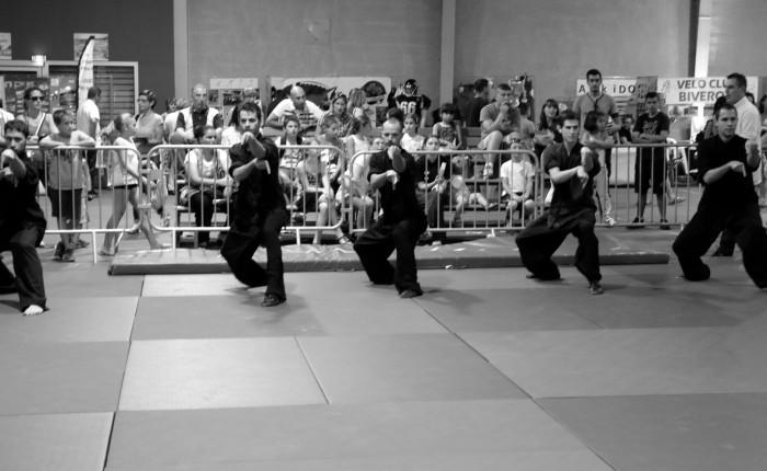 Kung Fu – Démonstration Journée des Assos