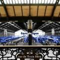 06_DavidTribal_IMG_9025-TrainsBleux-texte_1500