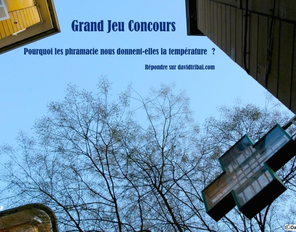 DavidTribal_IMG_8566-Concours_1500