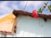 davidtribal-alagoinhas-img_9104-800