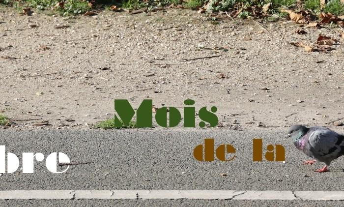Novembre, Mois de la Photo – Paris